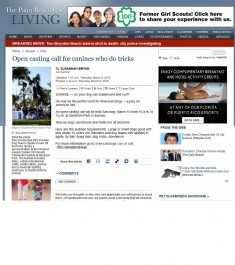 American Idogs in the Palm Beach post